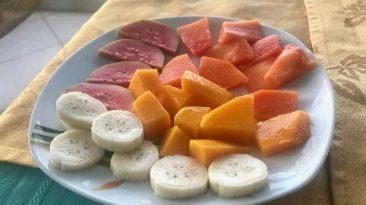 vegetarian havana