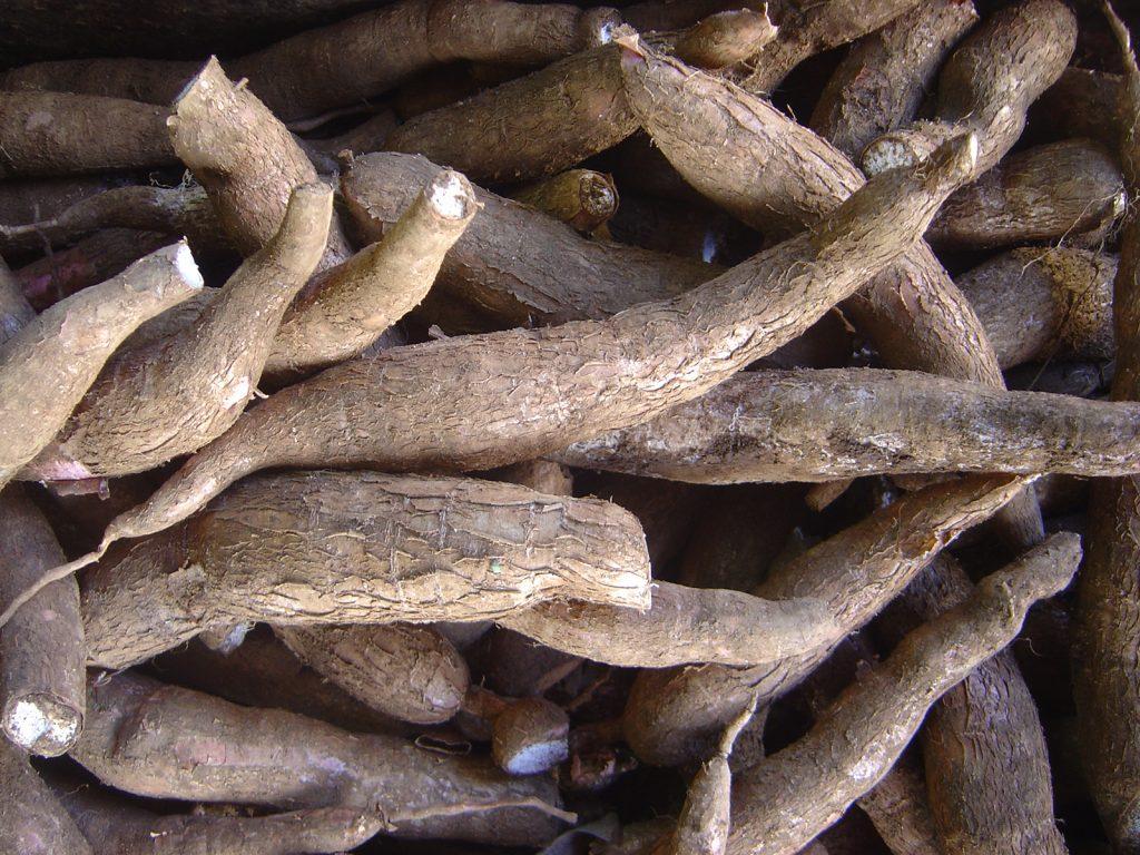 cuban ingredients