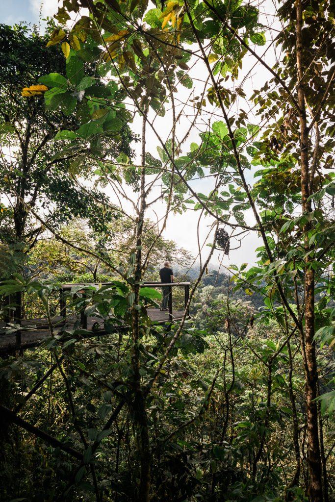 ken deckinger mashpi lodge cloud forest