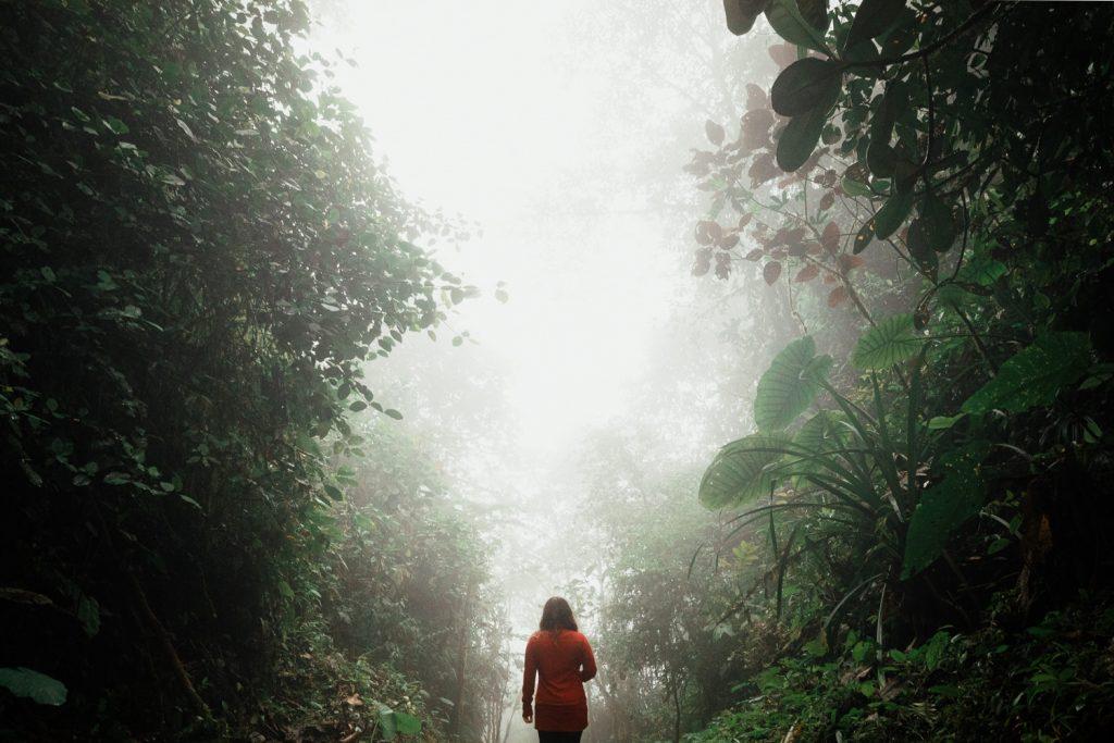 zuzy martin-aly cloud forest ecuador