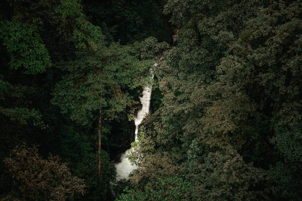 mashpi reserve cloud forest waterfall