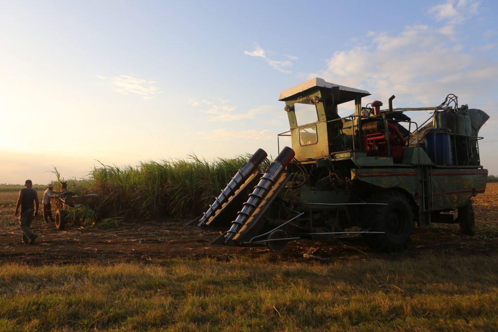 a soviet combine harvesting sugarcane in cuba