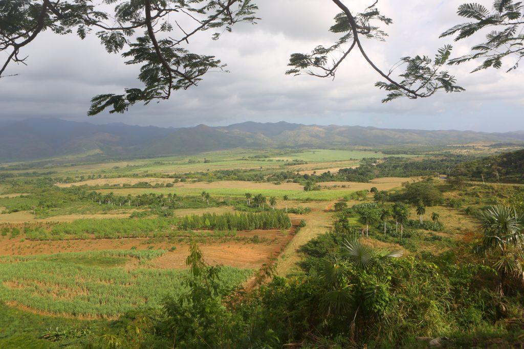 valle del los ingenios was once sugarcane