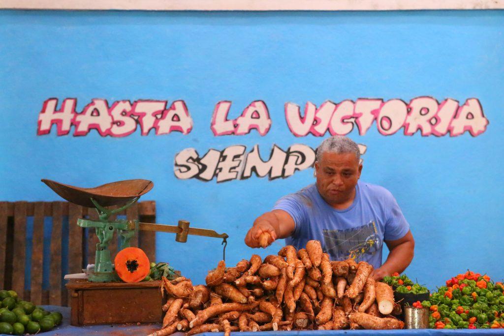 a cuban agropecuario